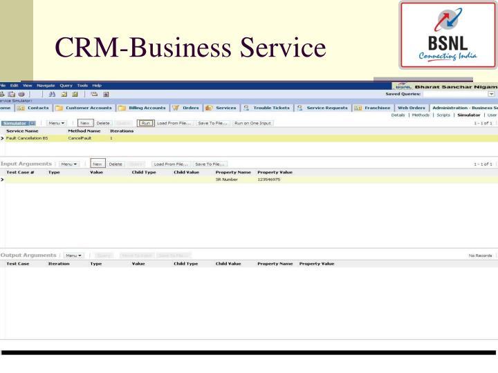 CRM-Business Service