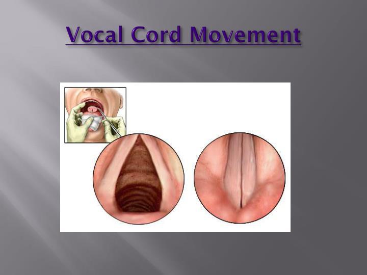 Vocal Cord Movement
