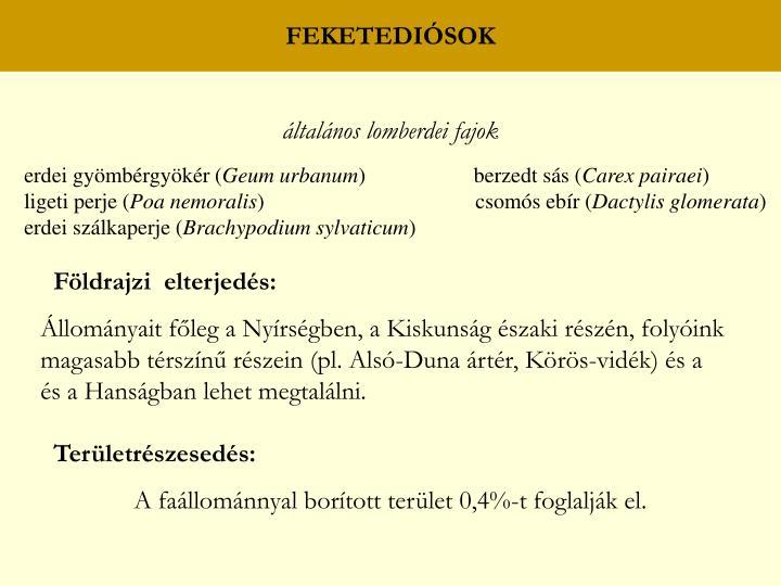 FEKETEDIÓSOK