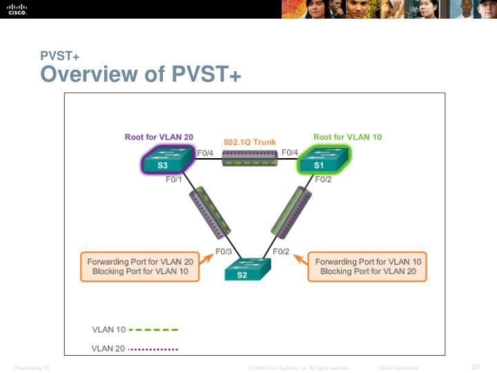 PVST+