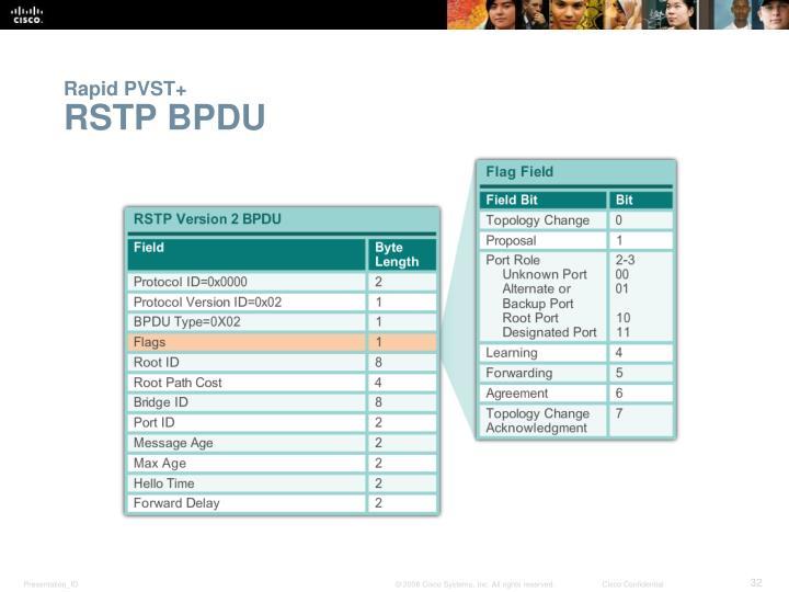 Rapid PVST+