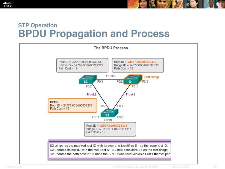 STP Operation