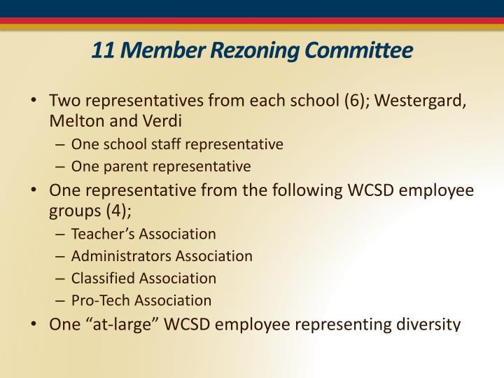 11 Member Rezoning Committee
