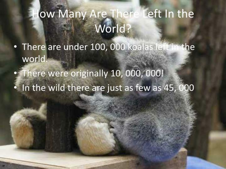 How Many Are There Left In the World?