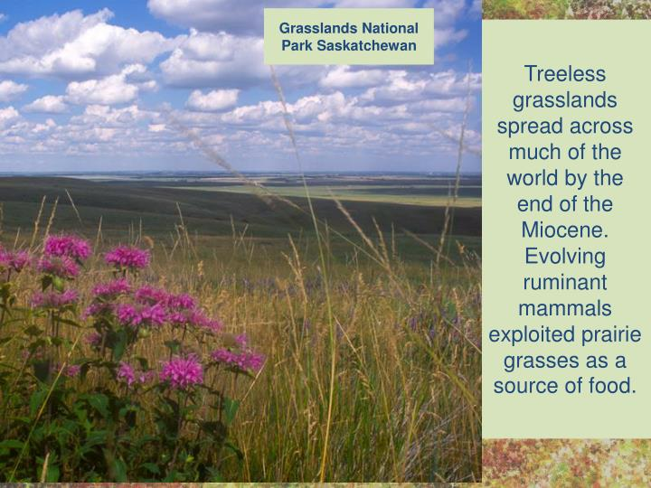 Grasslands National Park Saskatchewan