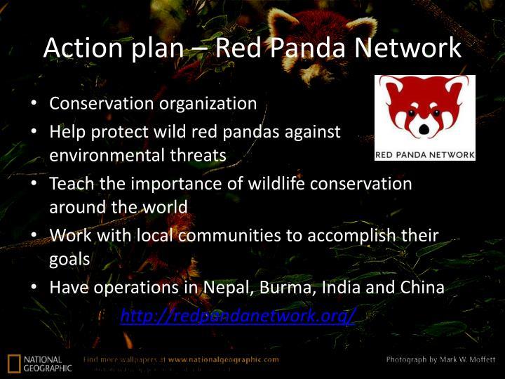 Action plan – Red Panda Network