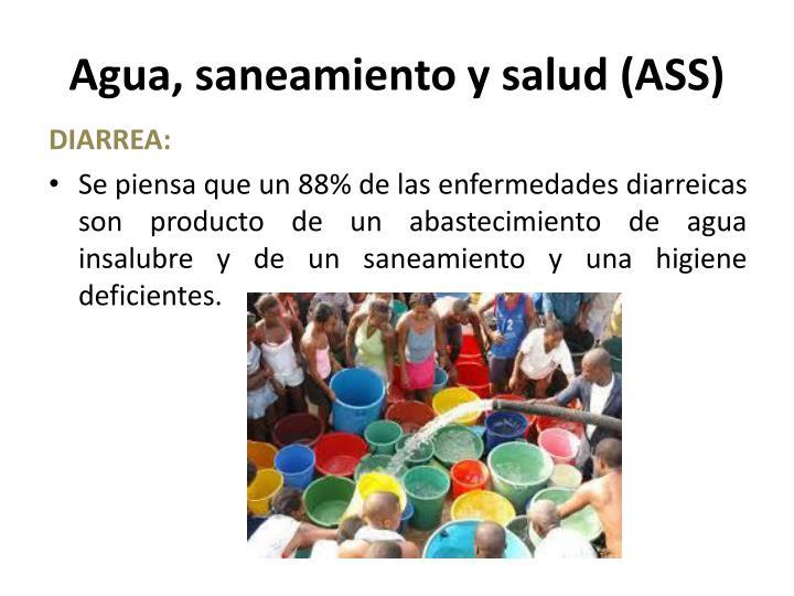 Agua, saneamiento y salud (ASS)