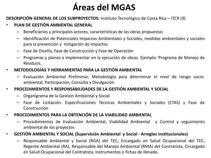 Áreas del MGAS