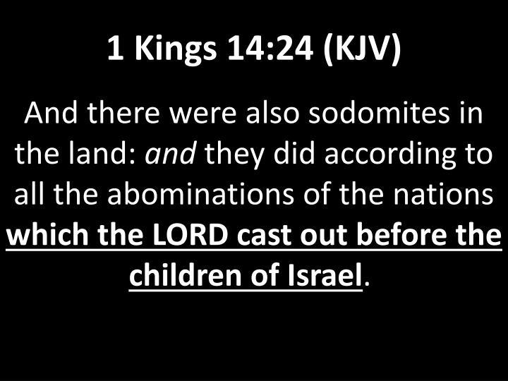 1 Kings 14:24 (KJV)