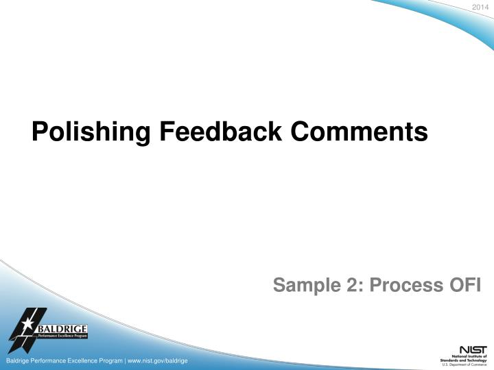 Polishing Feedback Comments