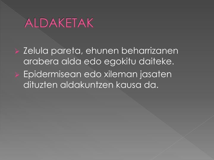 ALDAKETAK