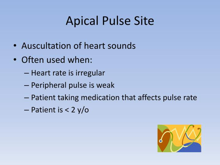 Apical Pulse Site