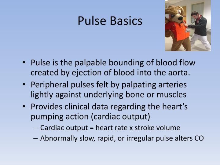 Pulse Basics