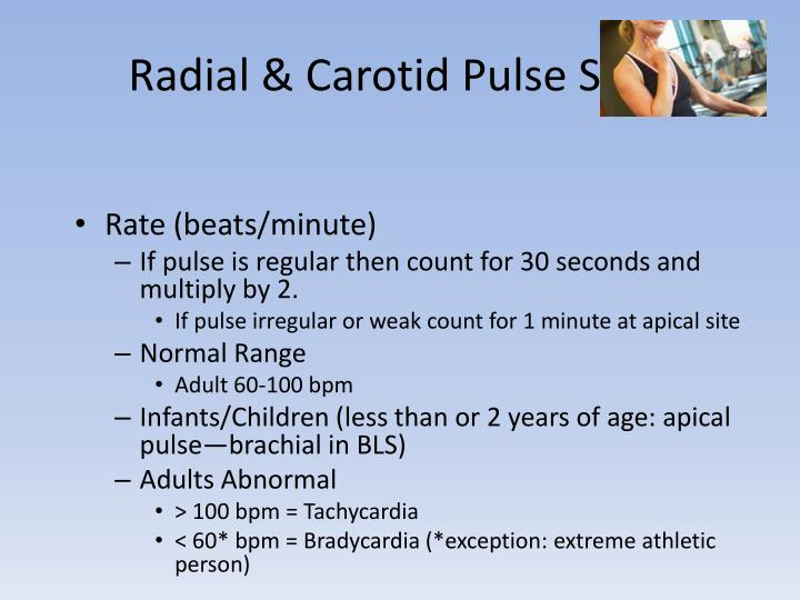 Radial & Carotid Pulse Sites