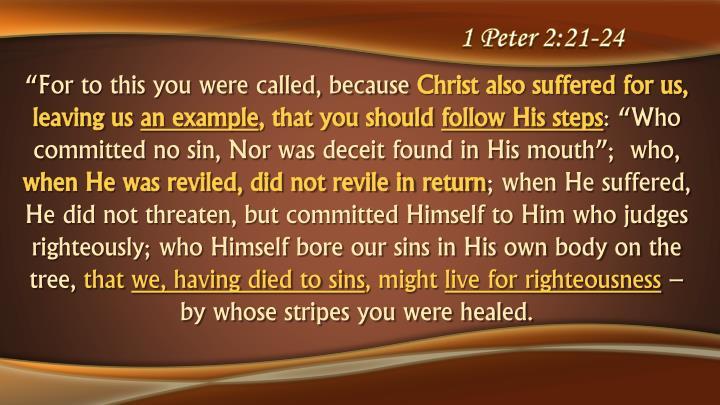 1 Peter 2:21-24
