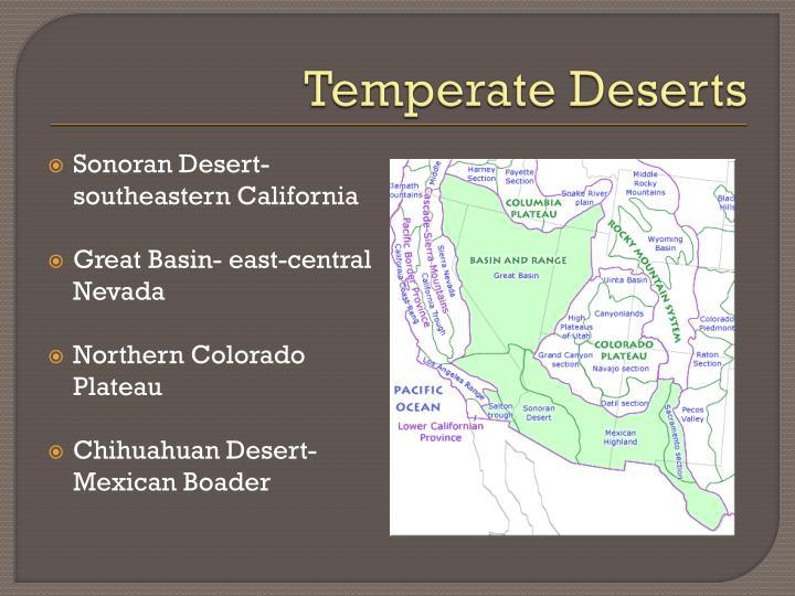 Temperate Deserts