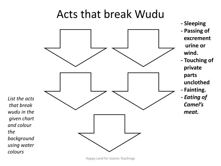 Acts that break wudu