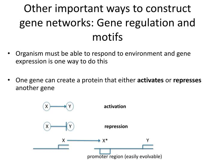 Other important ways to construct gene networks: Gene regulation and motifs