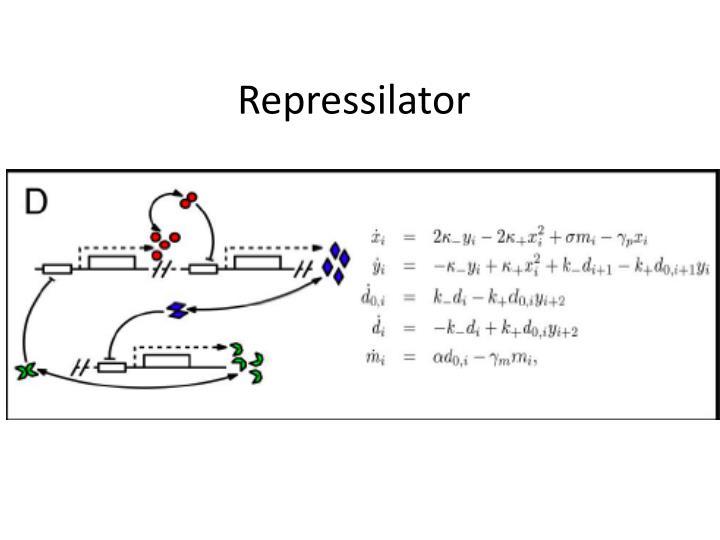 Repressilator