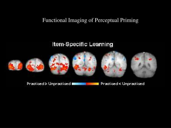 Functional Imaging of Perceptual Priming
