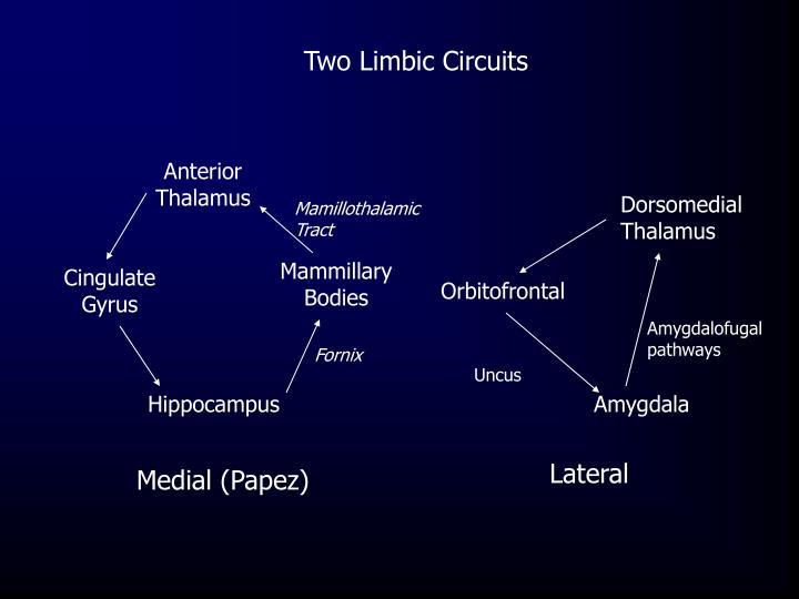 Two Limbic Circuits