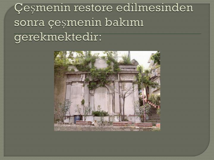 Çeşmenin restore edilmesinden sonra çeşmenin bakımı gerekmektedir: