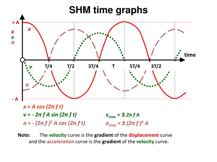 SHM time graphs