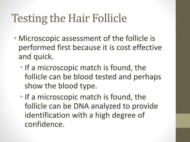 Testing the Hair Follicle