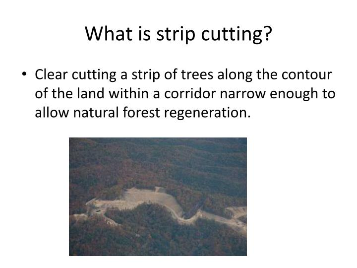 What is strip cutting?