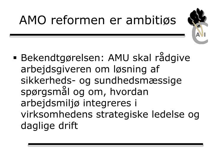 AMO reformen er ambitiøs