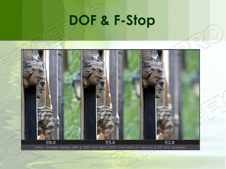 DOF & F-Stop