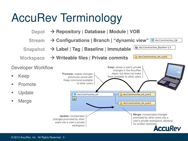 AccuRev Terminology
