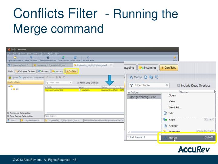 Conflicts Filter  -
