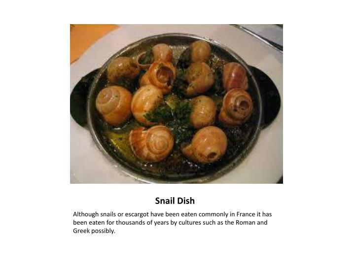 Snail Dish