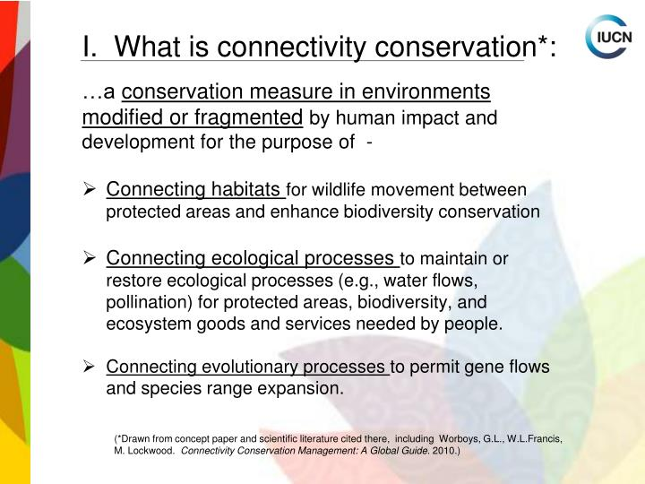 I.  What is connectivity conservation*: