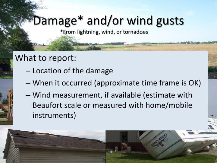 Damage* and/or wind gusts