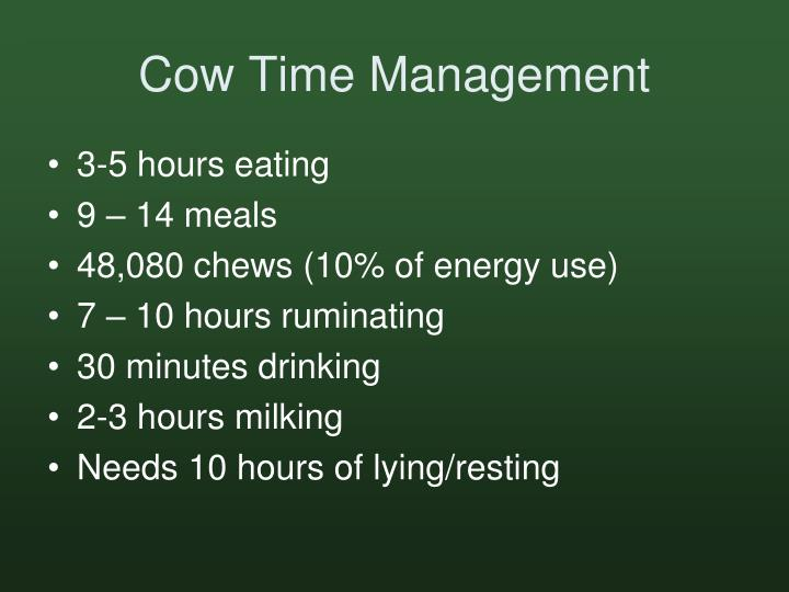 Cow Time Management
