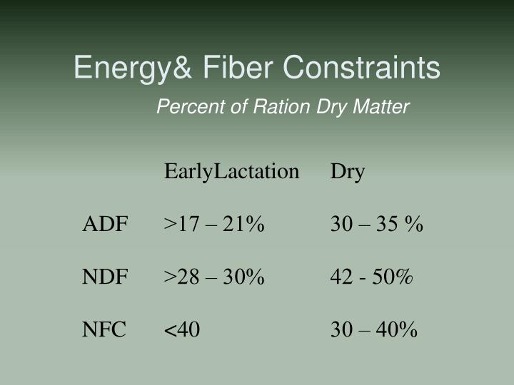 Energy& Fiber Constraints