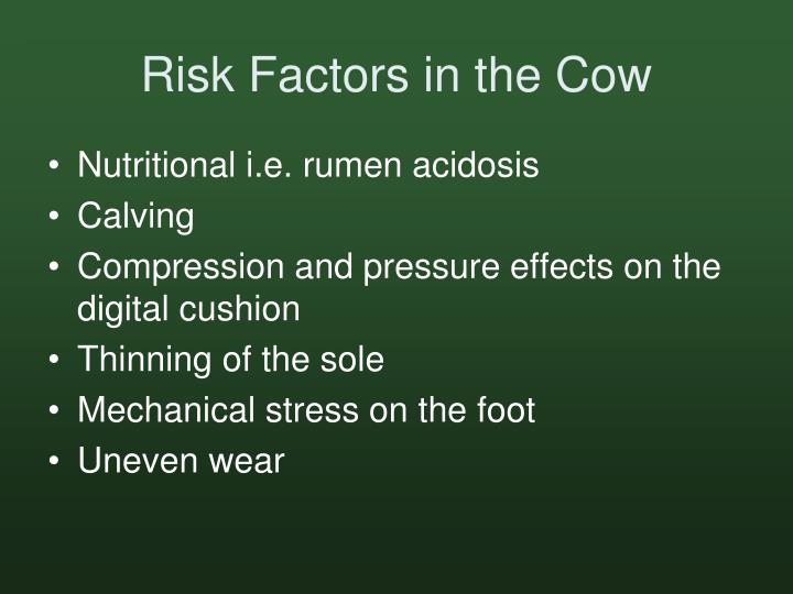 Risk Factors in the Cow