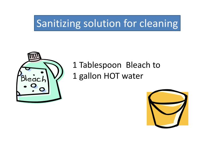 Sanitizing solution for cleaning