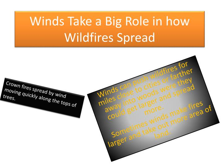 Winds Take a Big Role in how Wildfires Spread