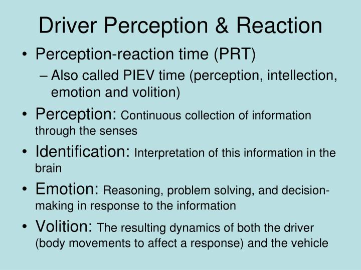 Driver Perception & Reaction