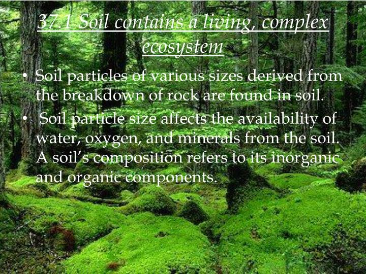 37 1 soil contains a living complex ecosystem