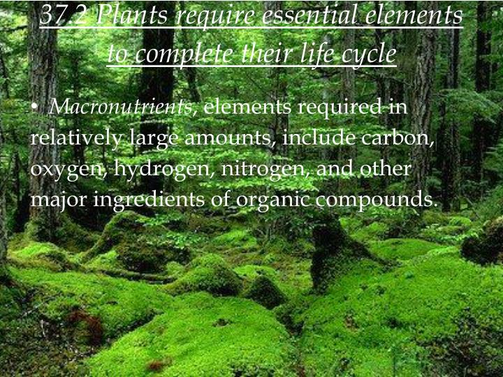37.2 Plants require essential elements to complete their life cycle