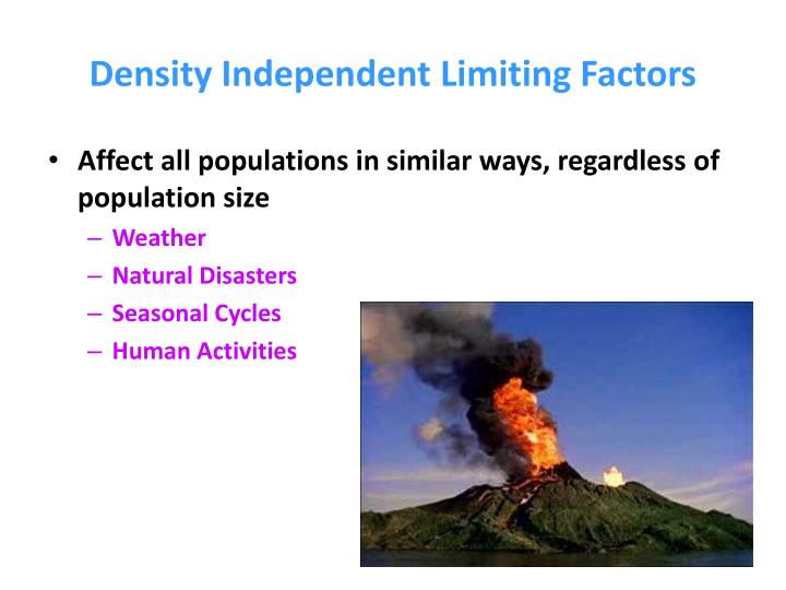 limiting factors Populations and ecosystems vocabulary related to limiting factors learn with flashcards, games, and more — for free.