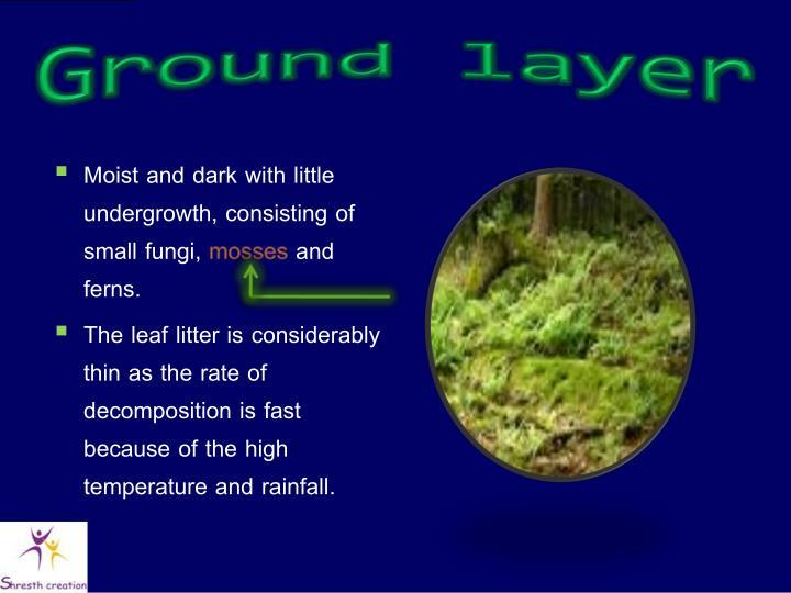 Ground layer