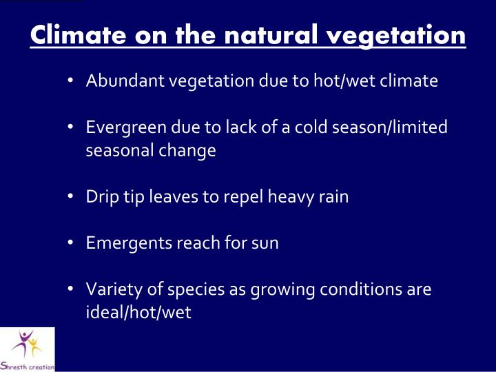 Climate on the natural vegetation