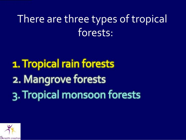 There are three types of tropical forests: