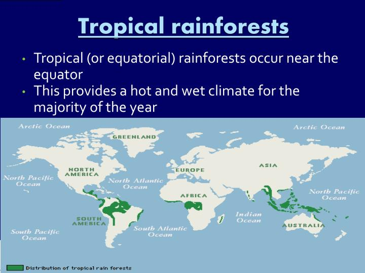 Tropical rainforests