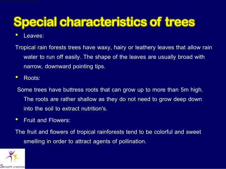 Special characteristics of trees